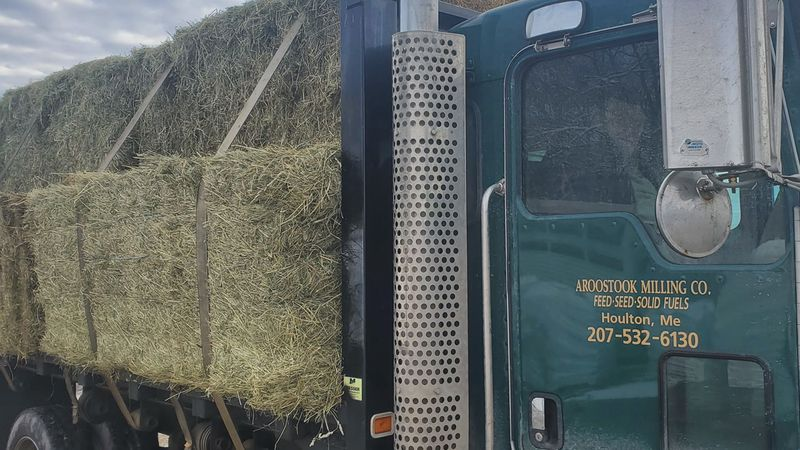 The Cooperative Extension is looking to help connect those with hay with livestock owners in...