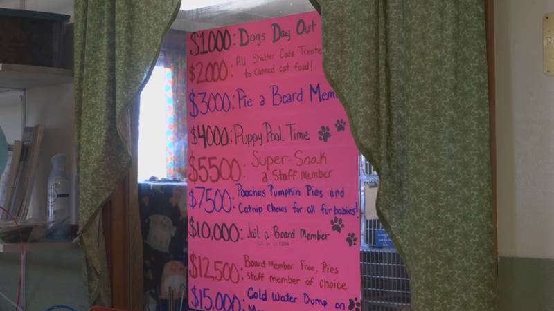13,000 raised for Central Aroostook Humane Society.