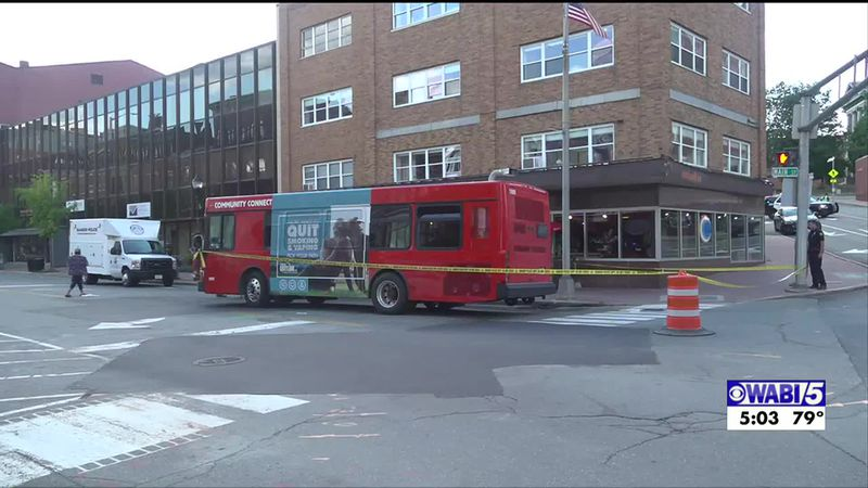 A California woman who was hit by a Bangor city bus in August is seeking $15M in damages.